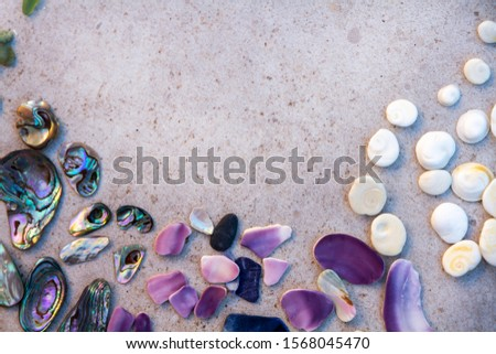From above photo of shells, glass, stones, mother of pearl and Paua Shell in a circle - semi circle.  #1568045470