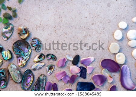 From above photo of shells, glass, stones, mother of pearl and Paua Shell in a circle - semi circle.  #1568045485