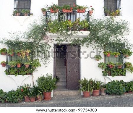 Front of house typical of Andalusia, Spain