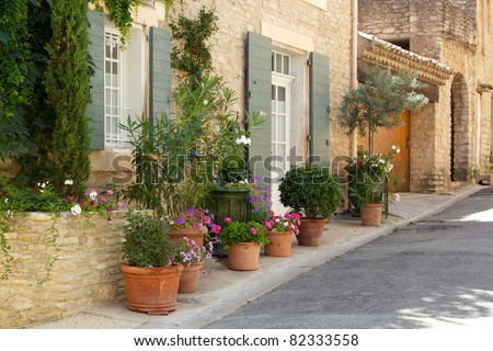 Front of house with plant pots