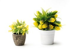 Front view beautiful artificial green plant yellow flowers in white and brown pot isolated on white background.artificial green plants in flower pots home and office decoration without care.copy space