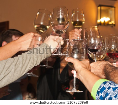 Front view, close up of wine tour guests toasting their honored wine maker  at a south east  regional winery in spain