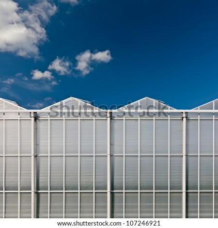 Front view of a greenhouse in The Netherlands with a blue sky in the background with almost no clouds