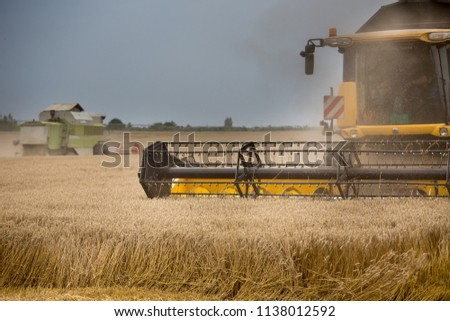 Front view of combine harvester working in wheat field in summer #1138012592