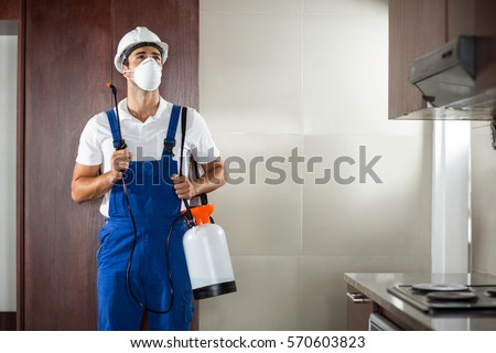 Front view of pest worker spraying standing in kitchen at home #570603823