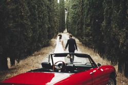 Front view of red oldfashioned convertible car on foreground and back view of walking on narrow path bride and groom holding together hands. beautiful couple in love. Concept of love and marriage.