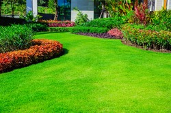 Front yard, landscape design With multicolored shrubs intersecting with bright green lawns Behind the house is a modern, garden care service, green grass with a beautiful yard for the background.