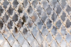 Frost and snowflakes covered cold metal fence on a winter day. Snowy natural background for design and text