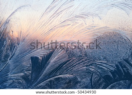 frost and sunlight on winter glass