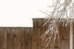Frost branches with old barn background