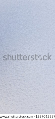 Frost in the morning,frost background,frost on the ground,frost on grass,white background #1289062357