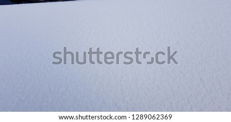 Frost in the morning,frost background,frost on the ground,frost on grass,white background #1289062369