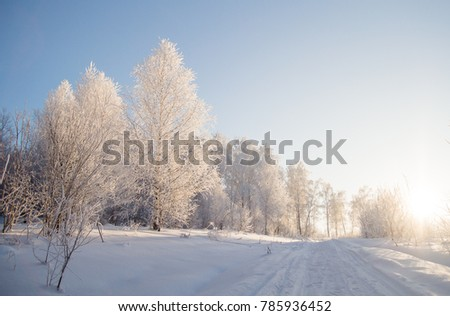 frost in the street. frozen trees. covered with hoarfrost. bright weather. all around the snow. winter day #785936452