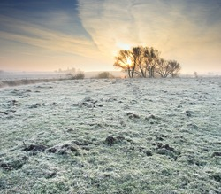 Frosted autumn meadow at dawn