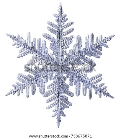 Frosted Glitter Snowflake Isolated on White. #738675871