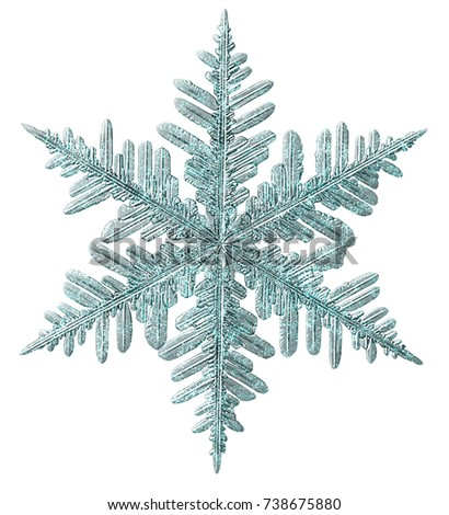 Frosted Glitter Snowflake Isolated on White. #738675880