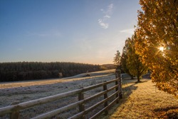 Frosty Frozen field with Autumn tree and sunshine