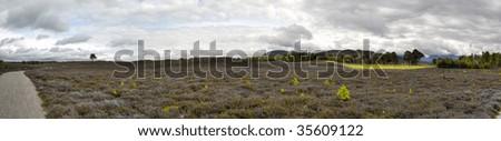 Frosty Highland Landscape