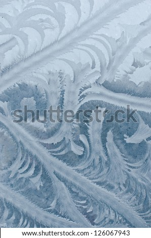 Frosty pattern at a window