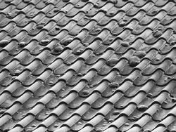 Frosty roof tiles winter black and white