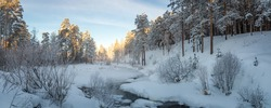 frosty Sunny day in the Urals a forest with a frozen river, Russia, January
