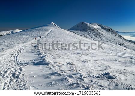 Frosty winter morning in the mountains. View of Szeroki Wierch and Tarnica (the highest peak of the Bieszczady Mountains in Poland -1,346 m a.s.l.). Bieszczady National Park, Subcarpathian Voivodeship Zdjęcia stock ©