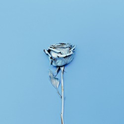 Frozen Blue Rose. Minimalism fashion art.
