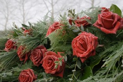 Frozen Dew On Bouquet of Roses