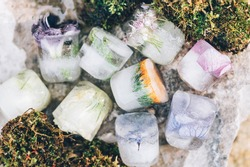 Frozen Flowers in Ice Cubes on Light Background, floral ice in moss