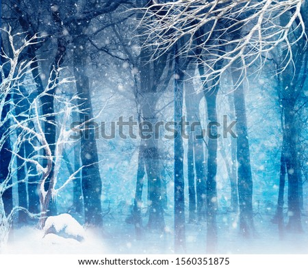 FROZEN FOREST BACKGROUND WITH ICE AND SNOW