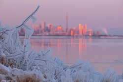 Frozen ice covered tree branches and Toronto city skyline out of focus in the background during Polar Vortex, colorful pink and orange sunset sky, frozen surface of Lake Ontario, sunset reflection.