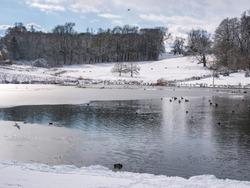 Frozen lake, at Leeds castle, Kent, UK