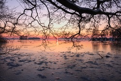 Frozen lake with silhouette of bare branch in winter at sunset