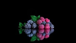 Frozen organic raspberry and blackberry berries covered with hoarfrost. Frozen products. Steamy cold frozen fruit. black background. Healthy vegetarian diet. Freshly from the fridge