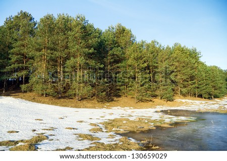 frozen river and trees in spring season