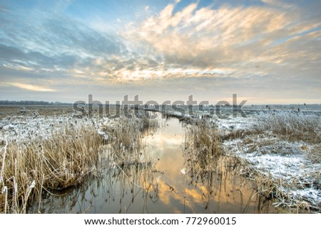 Frozen river Drentsche Aa in northern part of the province of Drenthe in the Netherlands on a cold morning #772960015