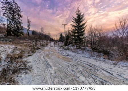 Stock Photo Frozen road in the wild forest