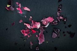 Frozen rose petals on black background
