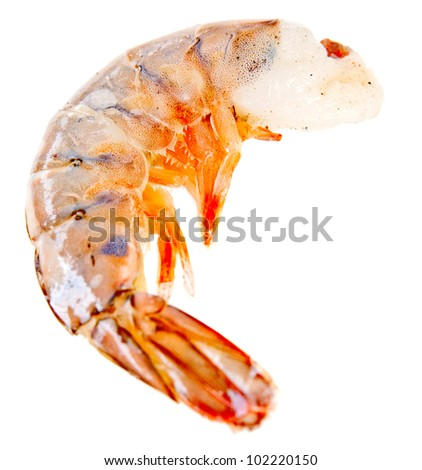 Frozen shrimp or prawn - isolated over a white background