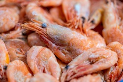 Frozen shrimps close-up. Dry freeze food with a minimum amount of water. Seafood delicacies. Selective focus