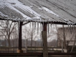 Frozen water droplets off melting icicles along the corrugated tin roof of a barn