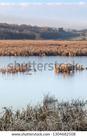 Frozen waters and reed beds of Silverdale Moss with Arnside Tower in distance Stock fotó ©