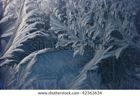 frozen window closeup texture background