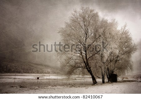 Frozen winter landscape