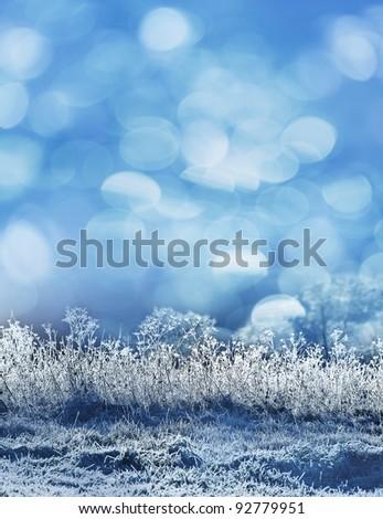 frozen winter landscape - background