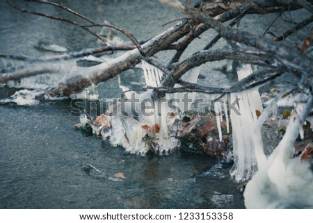 frozen world, frozen trees, frozen water #1233153358