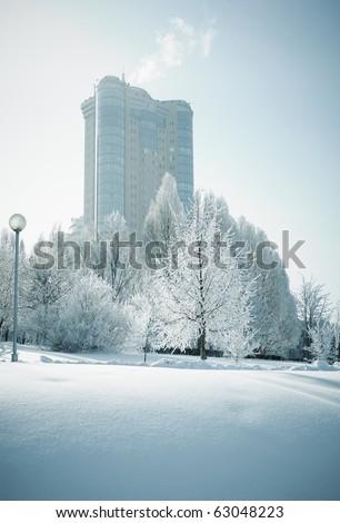 frozen world , selective focus