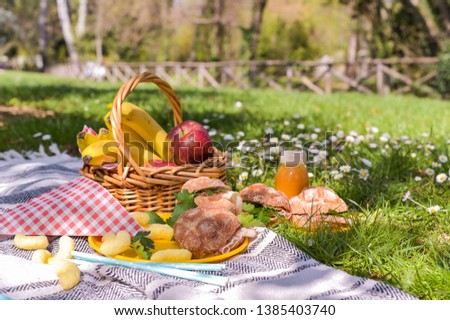 Fruit basket and picnic snacks. Sunny day in the park and green grass with flowers
