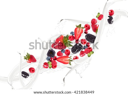 Fruit, berry mix in milk splash, isolated on white background #421838449