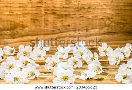 Fruit blossoms on wood background for invitation cards, wedding invitation, greetings card, mothers day, floral backgrounds